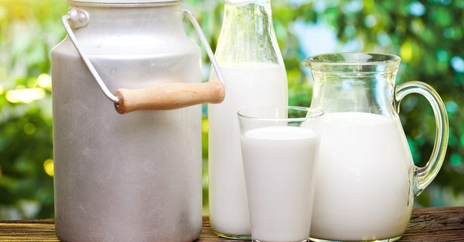 Молоко – насколько оно полезно?